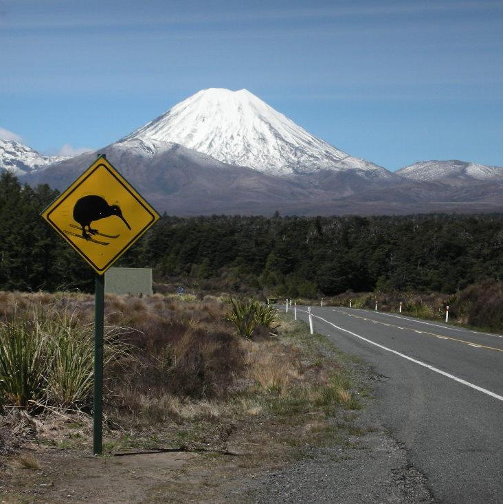 Mt_Ngaurahoe_-_kiwi_skiing_(2)
